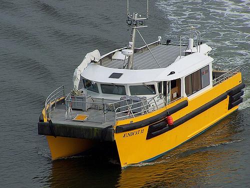 windcat12-2
